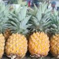 Pack Ananas : 3 ananas Victoria
